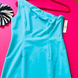NWT Elegant & Fitted Single Shoulder Draped Dress